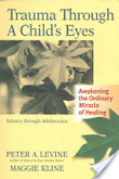 Trauma Through a Childs Eyes book cover