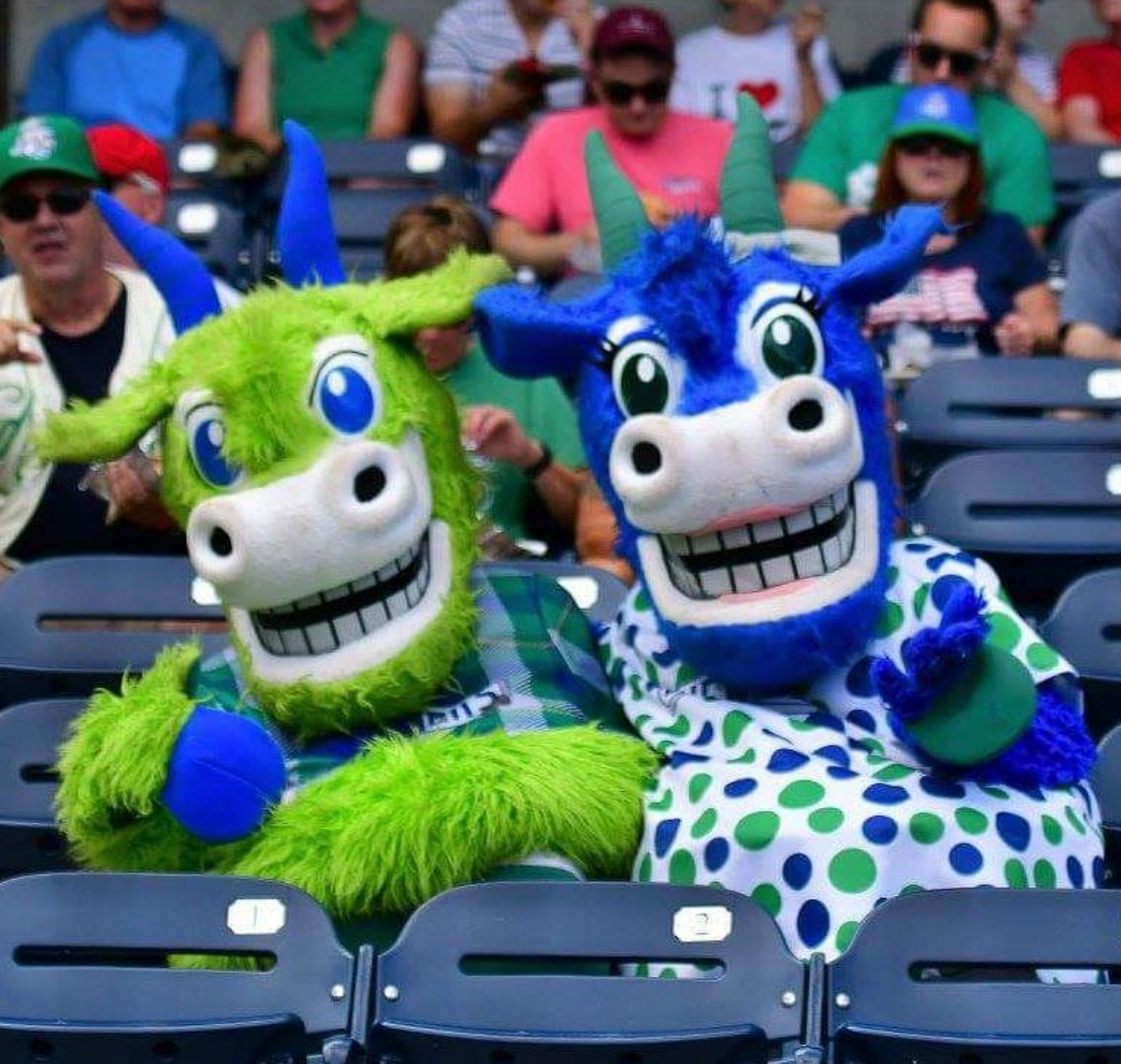Chompers and Chew Chew, the Hartford Yard Goats mascots