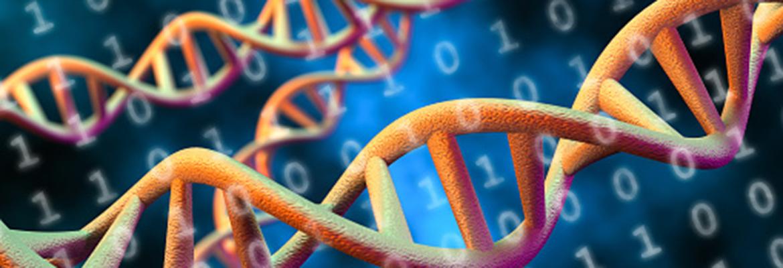 DNA Digital Data Storage Concept