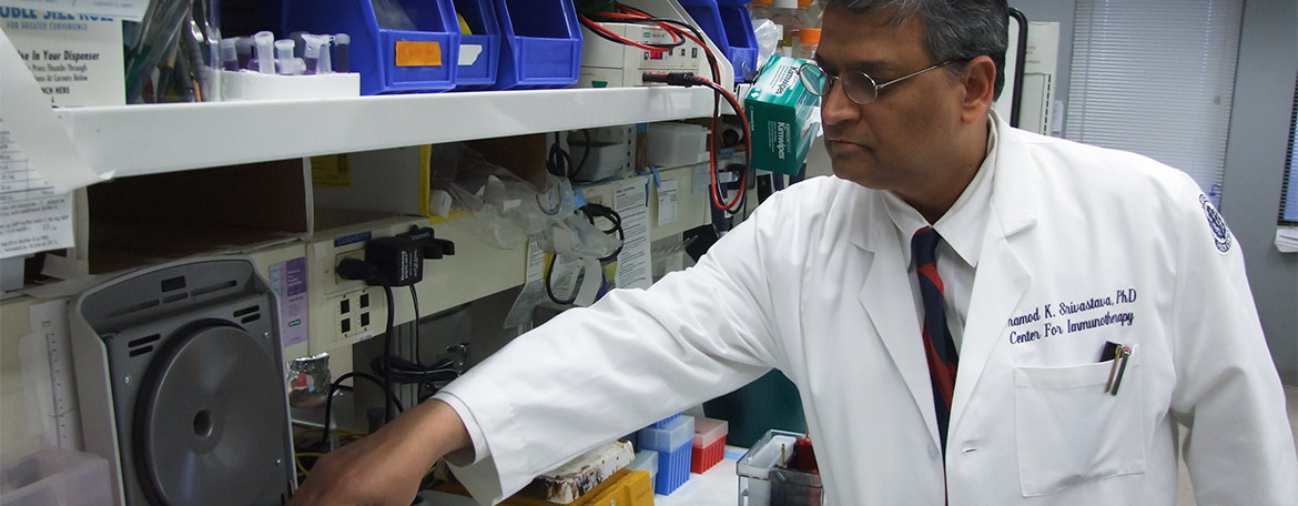 Dr. Pramod Srivastava working in his lab