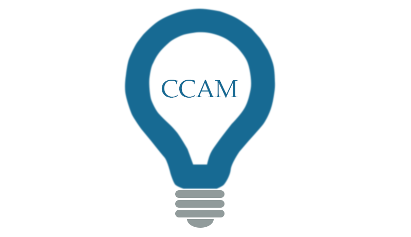 CCAM Ideas Icon