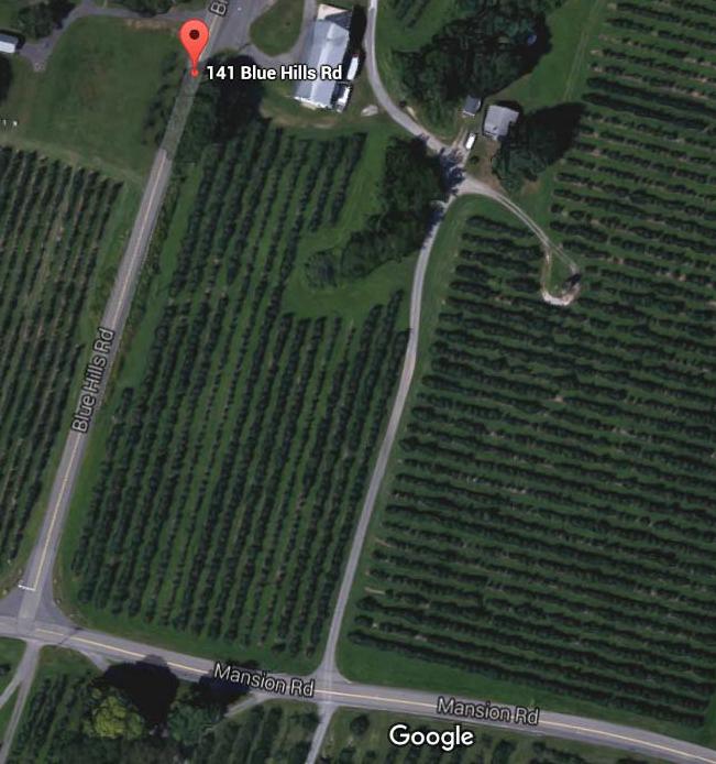 Blue Hills Orchard