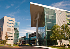 UConn Musculoskeletal Institute
