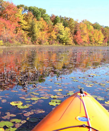 Scenic view from a kayak