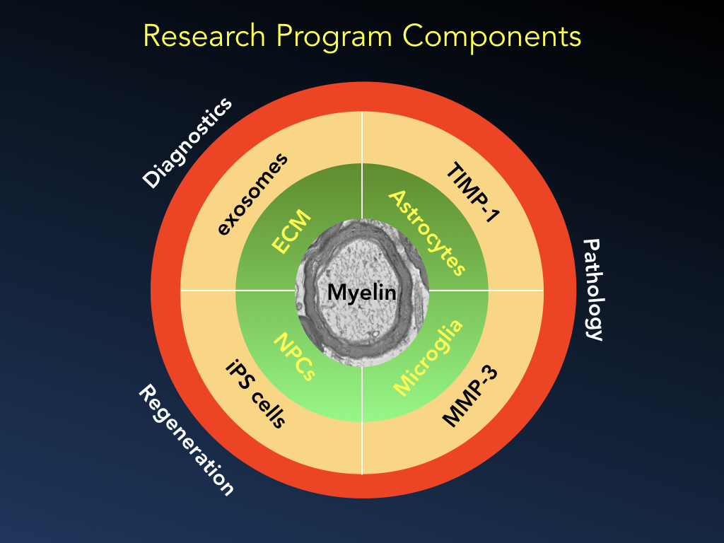 Illustration of research program components