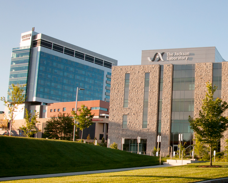 Jackson Lab and UConn Health Tower