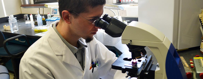 Alex Adami, M.D./Ph.D. graduate student