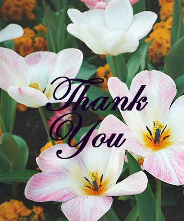 Thank You and Flowers in Background eCard