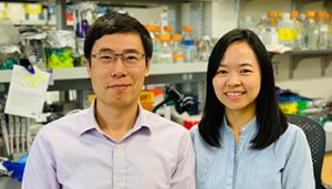 Dr. Ju Chen, recipient of the 2019 AAI Careers in Immunology Fellowship