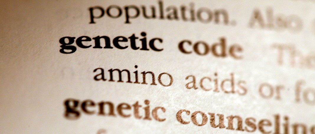 Genetic code dictionary entry