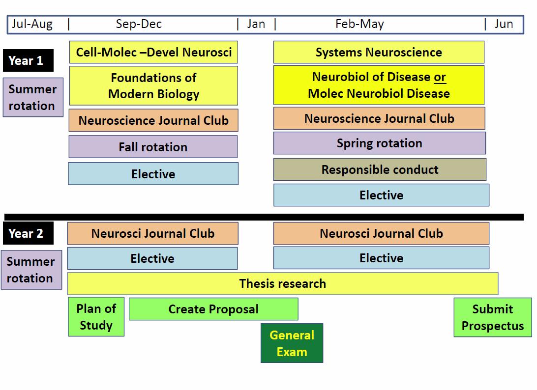 Neuroscience program timeline