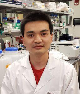 Qinfang Liu