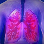 New $3M NIH Grant Targets Respiratory Infection with Math. Modeling