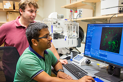 Assistant professor Kshitiz shows Visar Ajeti, a postdoctoral fellow, cells through the microscope on a computer monitor