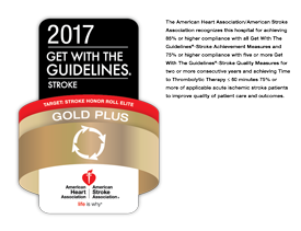 AHA 2015 Get with the Guidelines Silver Plus Award