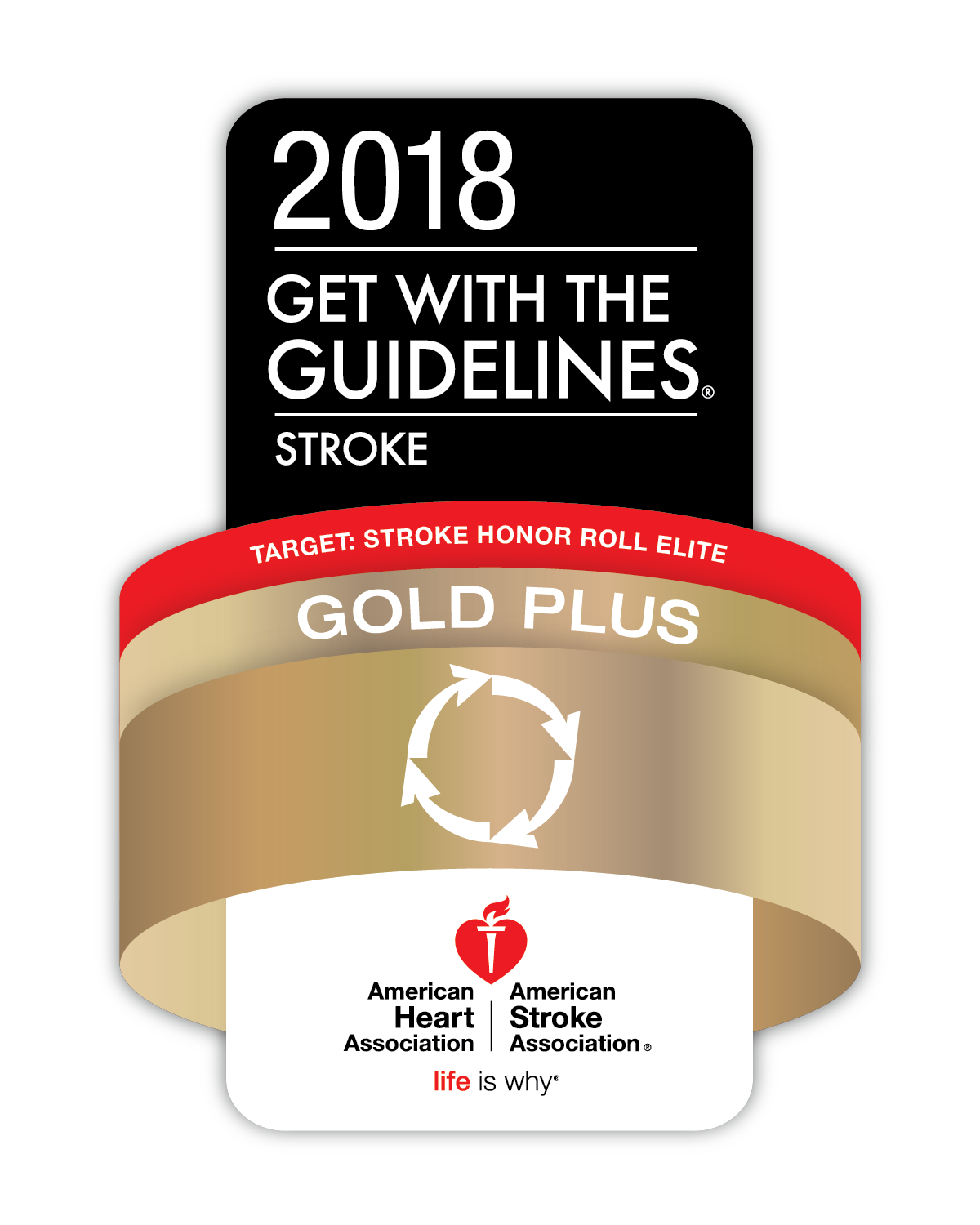 American Heart Association 2018 Get with the Guidelines Gold Plus Award