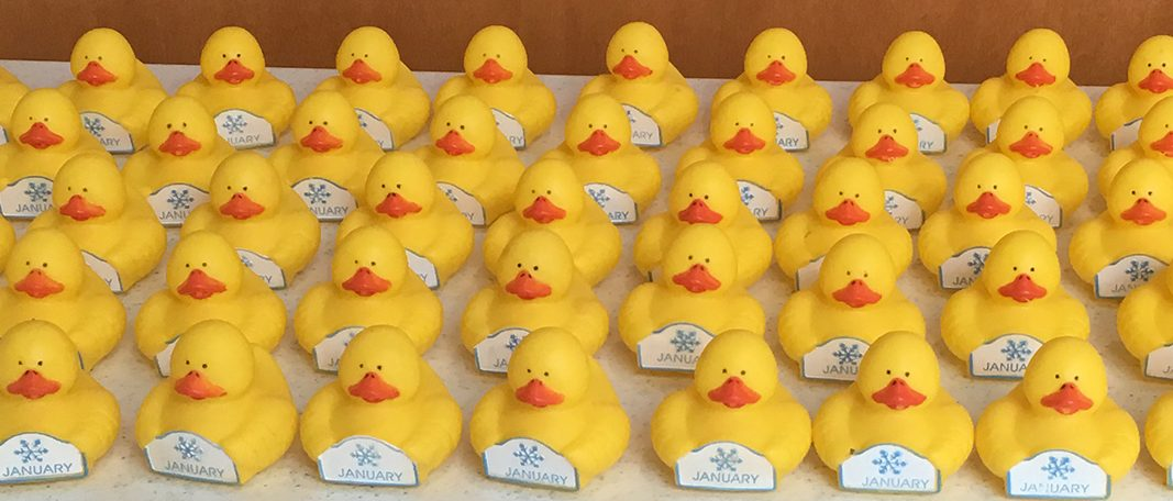 Rubber duckies ready for Rubber Ducky Day
