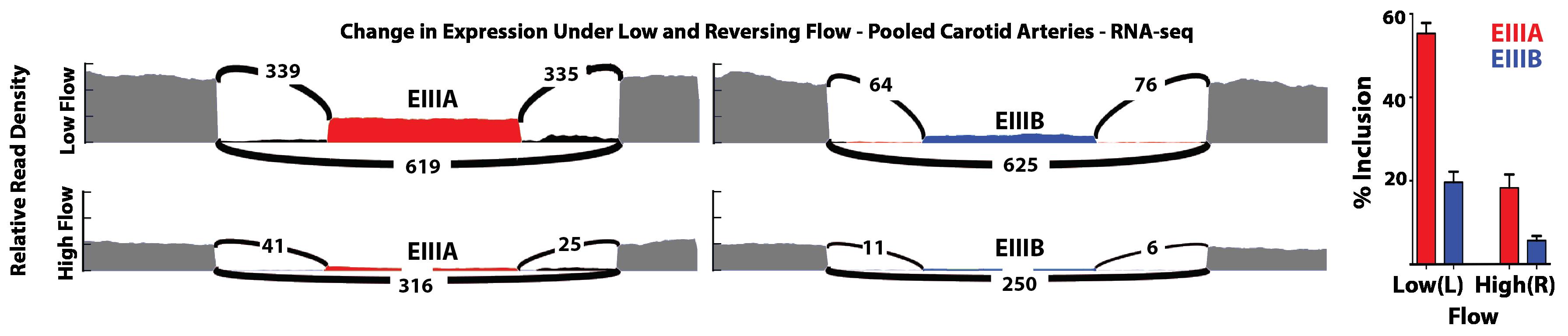 Splicing image