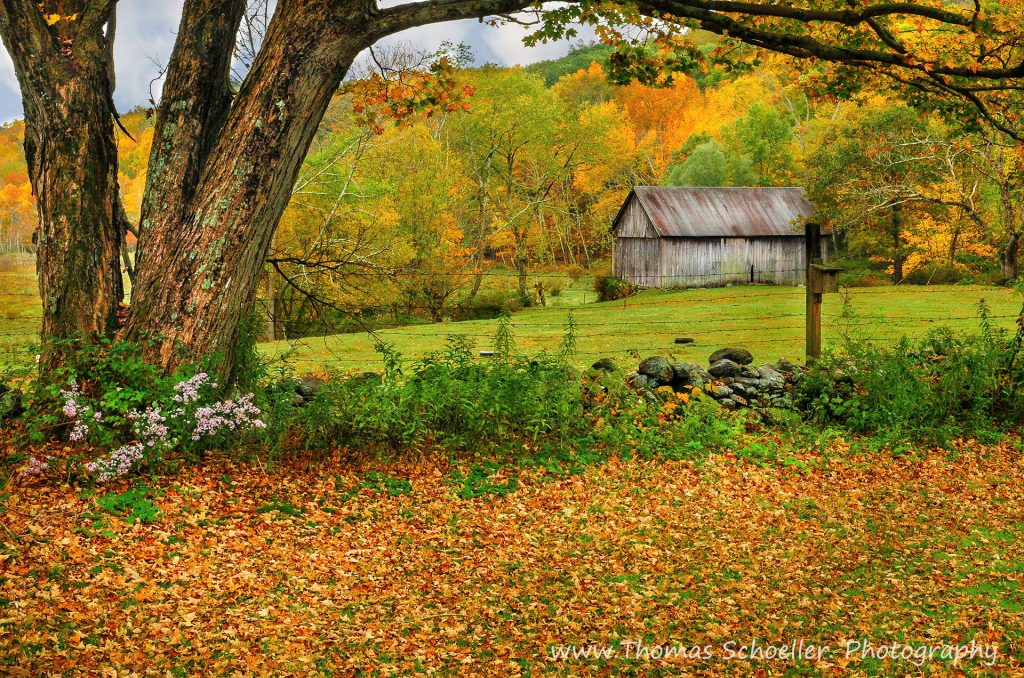 Fall scene in Kent Hollow, Connecticut (Thomas Schoeller Photography)