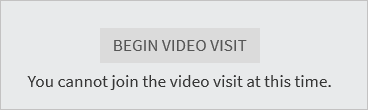 Begin Video Visit Button screenshot